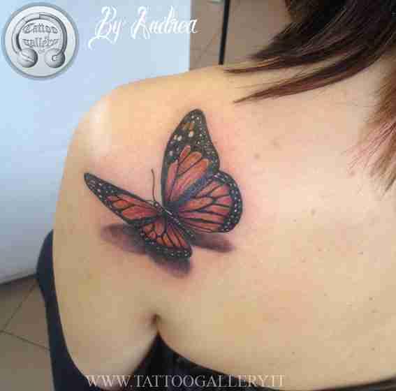 farfalla-appoggiata