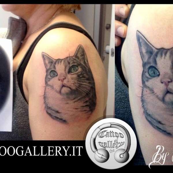 """alt=""""tatuaggi animali realistici by Tartari andrea gattino colorato"""""""