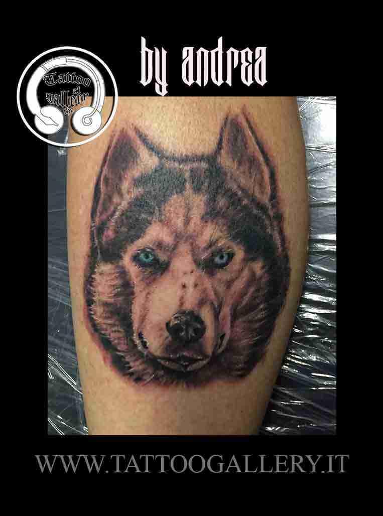 tattoo husky sito