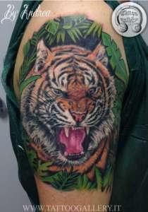 """alt=""""tatuaggi animali realistici tattoo tigre by Andrea tartari"""""""