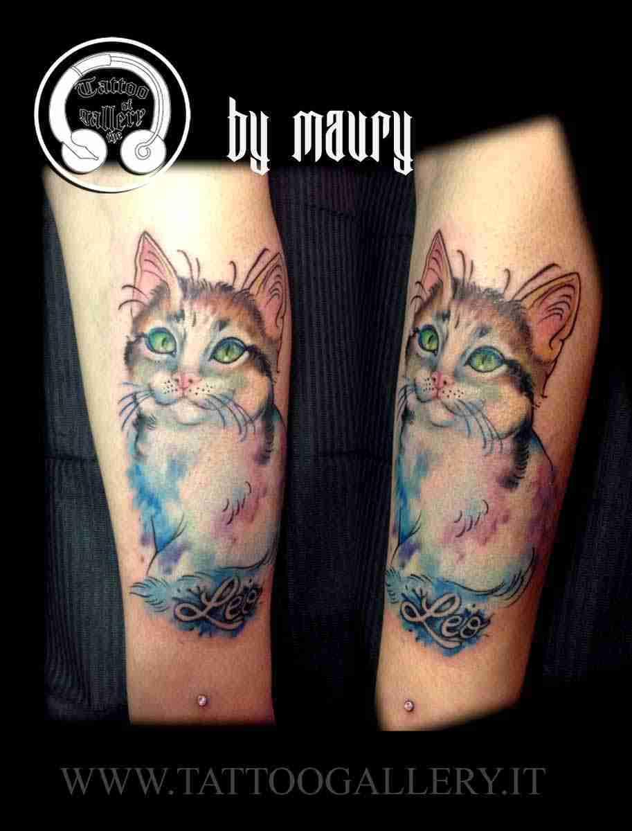 gattino watercolor sito