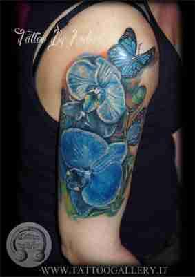 orchidee-spalla