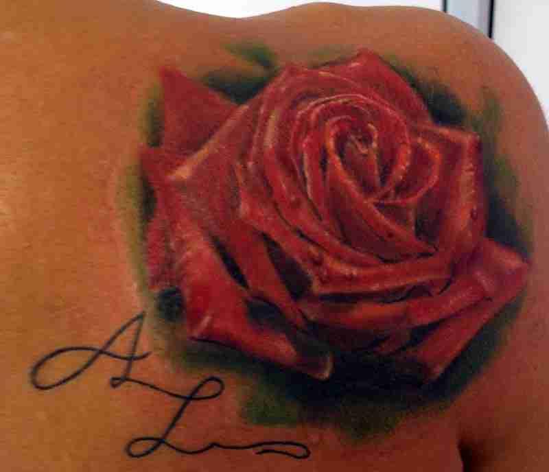 rosa-rossa-scapola