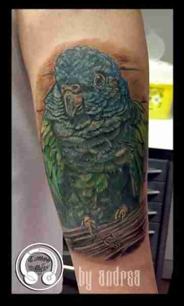 "alt=""tattoo animali realistici pappagallo"""
