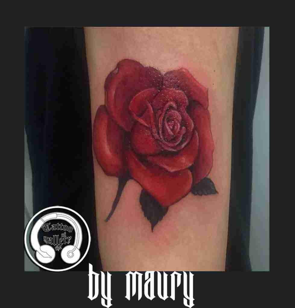 rosarosasa