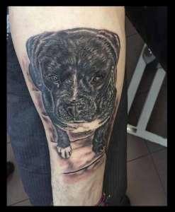 """alt="""" tattoo animali realistici cane nero"""""""