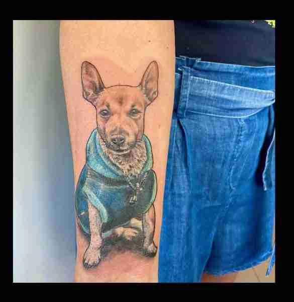 """alt=""""cagnolino ritratto animali realistici """""""